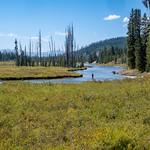 Yellowstone - Un pescatore lungo lo Snake River