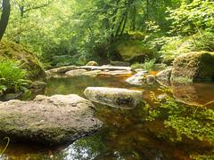 La Mare aux Fées (inma F) Tags: armorica bretaña finisterre francia hulgoat bosque verde hada fairy forest charco lago pool spring green bretagne france poza agua nature naturaleza