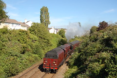 LMS Coronation Pacific No: 6233 Duchess of Sutherland climbs past Wingfield Road working 5Z84 15:01 Plymouth to Par. 15/09/19 (mattcareyphotography) Tags: lms coronation duchess sutherland 6233 46233 plymouth wingfield road support coach pob 5z84 par royal duchy steam loco