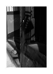 (billbostonmass) Tags: trix 400 ddx 14ddx800min68f m6 50mm summicron film boston massachusetts
