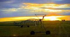 Sunrise NWN (Mr. Happy Face - Peace :)) Tags: sky cloud sunrise nwn tuesday september autumn fall prairies canada cans2s art2019 glow