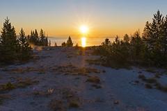 Sunrise at West Thumb (ValeTer_) Tags: sky nature snow winter tree atmospheric phenomenon sunrise morning sunset natural landscape nikon d7500 national park usa wy wyoming yellowstone nps nikond7500 sunlight sunbeams sunstar nationalpark yellowstonenationalpark