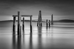 Pier pilings on the Bay (R Lund photography) Tags: longexposure leefilter canon6d bw blackandwhite monochrome monochromatic pilings pier nd neutraldensity water sfbay moody