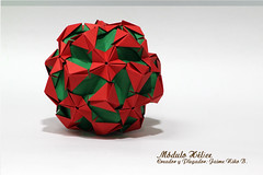 Módulo Hélice. (Jaime Niño Bernal) Tags: origamimodular origami kusudama