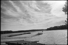 Patoka Lake (icki) Tags: august2019 in indiana lakepatoka southernindiana blackandwhite nopeople