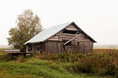 Trailer By The Barn House (k009034) Tags: copyspace europe finland outdoors scandinavia tranquilscene abandoned agriculture autumn barn barnhouse birch building fall farm farmhouse farming fields fog landscape mist morning nature nopeople old rural sky summer trailer tree weather wooden