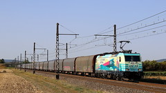 Bombardier 35300 - TRAXX F140 MS - Railpool Gmbh 'E 186 252' LINEAS / Meursault (jObiwannn) Tags: train fret ferroviaire locomotive lineas traxx