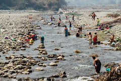 River Washing Scene, Saw Myanmar (AdamCohn) Tags: adam cohn burma chauk myanmar bath bathe bathing laundry river streetphotographer streetphotography washing wwwadamcohncom adamcohn