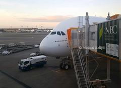 Emirates                                                                Airbus A380                                  A6-EDE (Flame1958) Tags: emirates emiratesa380 airbusa380 a380 380 ek airbus a6ede myflightaircraft nrt naritaairport narita 070919 0919 2019 ek318