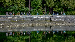 Seawall reflections (Christie : Colour & Light Collection) Tags: cityofvancouver vancouvercity stanleypark strolling walking people freshair exercise walkers stanleyparkseawall vancouverbritishcolumbia britishcolumbia canada history worldrecord worldslongestwaterfrontpath path waterfront downtownvancouver park trees seawall joggers cyclists water waterreflection reflections reflection stonewall walkway greatervancouver metrovancouver city citycenter mastermason mason 1931 vancouverhistory 30kilometers 30km 19miles canadianhistory perimeter bikepath outdoors outside healthy pacificnorthwest nikkor nikon flickr landscapephotography landscape shoreline oceanfront pacificocean ocean rocks green parkland forest oldgrowthtrees beach shore vancouver bccanada seawallstairs jamescunningham jimmycunningham bicycles bikes layers