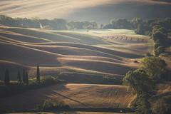 Morning waves (Massimiliano Teodori) Tags: valdorcia tuscany landscape italy