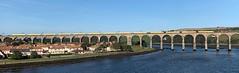 EWS 66110 (17/09/2019) (CYule Buses) Tags: eastcoastmainline class66 ews royalborderbridge 66110