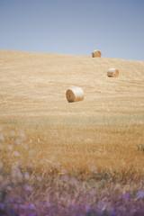 3 (Massimiliano Teodori) Tags: valdorcia tuscany landscape italy