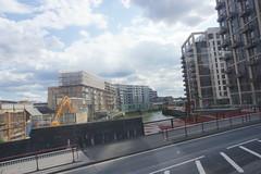 London_0473 (O En) Tags: london thames dog island river