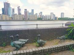 London_0455 (O En) Tags: london thames dog island river