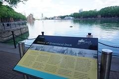 London_0461 (O En) Tags: london thames dog island river