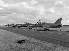 Midnight Hawks - BAe Hawk Mk. 51 (LarsHolte) Tags: pentax 645 pentax645 645n 6x45 smcpentaxfa 4585mm f45 120 film 120film analog analogue foma fomapan fomapan100classic 100iso rodinal aph09 mediumformat blackandwhite classicblackwhite bw monochrome filmforever filmphotography ishootfilm larsholte homeprocessing denmark danmark roskilde airshow midnighthawks bae hawk