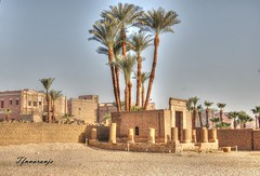 Cairo (Egipto) (TFNnaranjo) Tags: cairo egipcios africanos ciudad nilo pirámides menfis minaretes nikon tfnnaranjo