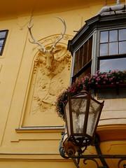 Schloss Eckartsau / Eckartsau Palace (rudi_valtiner) Tags: building castle architecture austria österreich palace architektur baroque gebäude barock niederösterreich autriche loweraustria marchfeld schlos eckartsau nationalparkdonauauen schloss