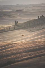 Flying over the desert #3 (Massimiliano Teodori) Tags: valdorcia tuscany landscape italy poiana buteobuteo