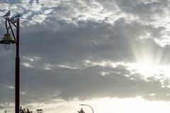 ZUMAIA (eitb.eus) Tags: eitbcom 27108 g1 tiemponaturaleza tiempon2019 verano gipuzkoa zumaia luismªalkortauria