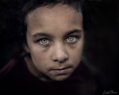 I see through my eyes; the camera is just a machine to record it for me. Juergen Teller (Lorrainemorris) Tags: lorrainemorrisphotography closeup zeiss sony7rm2 sigma artlens artistic greeneyes emotion sad soul child portrait