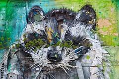 Raccoon (Rob Oo) Tags: lisbon portugal belem ccby40 lisboa lissabon ro016b urban art streetart