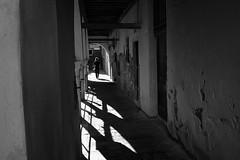 Venezia 2019 (Roberto Spagnoli) Tags: venice venezia girl lightsandshadows streetphotography fotografiadistrada biancoenero blackandwhite bw contrast controluce backlight italy alone porticato arcade