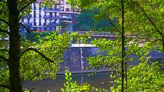 Andoain medidor rio Oria (eitb.eus) Tags: eitbcom 4837 g1 tiemponaturaleza tiempon2019 gipuzkoa andoain imanolfernandez
