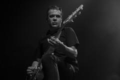 Carlos Beltran : guitarra - Micky & the Buzz (samarrakaton) Tags: samarrakaton byn bw blancoynegro blackandwhite monocromo mickythebuzz nikon d750 bilbao bilbo kafeantzoki concierto concert directo liveshow rock rockabilly carlosbeltran guitarra guitar 2019 2470