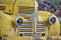 Dodge truck (Pattys-photos) Tags: old dodge truck yellow rusty idaho pattypickett4748gmailcom pattypickett