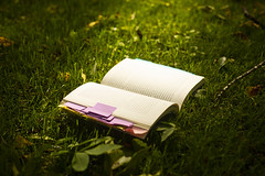 Well Read (Matt Champlin) Tags: books book read reading life morning yoga peaceful nature outdoors home skaneateles flx canon 2019 steph tuesday