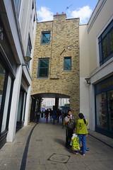 London_0475 (O En) Tags: london thames dog island river