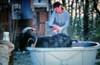 THE BLACK BILLY GOAT (Pinhole photography) (LitterART) Tags: goat bock pinhole forest wood ziegenbock märchen fairytale ziege frau girl bauernhof farm schwarzerziegenbock blackgoat blackbillygoat badewanne bathtub blechbadewanne