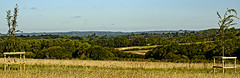 View north to Ashdown Forest (ianbartlett) Tags: outdoor 365 wildlife nature landscape birds plants trees flowers sky flight monochrome sign