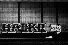 _DJS9433 (David Stebbing) Tags: grafitti blackandwhite flickr trains