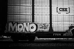 _DJS9434 (David Stebbing) Tags: grafitti blackandwhite flickr trains