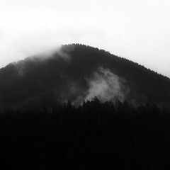 Coasting 008 (noahbw) Tags: capefalcon d5000 nikon oregon oswaldweststatepark pnw pacificnorthwest abstract blackwhite blackandwhite bw cloud clouds fog foggy forest landscape minimal minimalism mist misty monochrome mountain natural noahbw quiet sky spring square still stillness trees woods