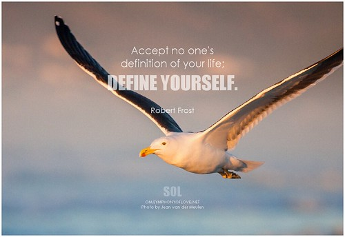 Robert Frost Accept no one's definition of your life; define yourself
