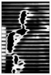 the Véranda - me (incognito) behind blinds (Armin Fuchs) Tags: arminfuchs nomansland véranda lavéranda blinds reflection selfy selfportrait stripes anonymousvisitor thomaslistl wolfiwolf jazzinbaggies window glass