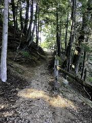 Path to the River Walk (lwgeiger) Tags: massachusetts osv oldsturbridgevillage places sturbridge