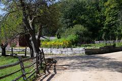 Freeman Farm (lwgeiger) Tags: massachusetts osv oldsturbridgevillage places sturbridge