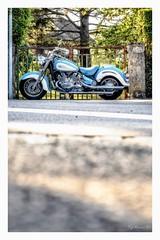 Easy Rider (Pyc Assaut) Tags: easy rider easyrider moto motorbike motor moteur bleuclair nikon nikonz6 z6 pyc5pycphotography pycassaut pierreyvescugni pierreyvescugniphotography extérieur ontheroad cruiser custom motorcycle road route street rue