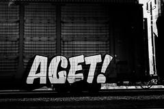 _DJS9429 (David Stebbing) Tags: grafitti blackandwhite flickr trains