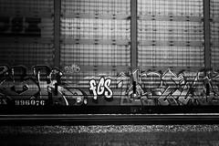 _DJS9430 (David Stebbing) Tags: grafitti blackandwhite flickr trains