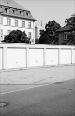 Dreierlei (fluffisch) Tags: fluffisch darmstadt bessungen leica m6 summicronm50f2 summicron 35mm f2 film analog kodak trix400 800