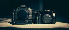 📷 Dueling Pistols 📷 (0sire) Tags: camera 35mm film canon elan7ne elan7e eos sun light shadow bokeh batterypackbp300