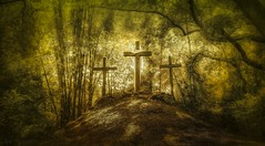 Le Voyage (JDS Fine Art Photography) Tags: inspirational spiritual symbols cross landscape nature trees beauty naturalbeauty hope faith strength thejourney thesearch