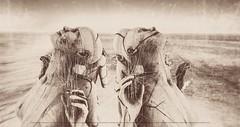 Cercami il cuore (Cammino & Vivo Capovolto ☆ Claudio ☆) Tags: cercamiilcuore mistero claudio fili shadow bokeh dreams sogni love mani hands intreccio wires cinematic seppia sea mare ombre colori colors natura umanoide musica music