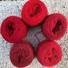 Cochineal (lady-ursula) Tags: yarn thread warptwist wool naturaldye cochineal